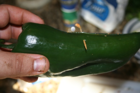 Once you've stuffed the pepper, stick a toothpick through it to help keep it from totally collapsing while it cooks.
